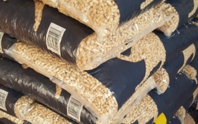 Wood-Based Cat Litter Available at Catseye